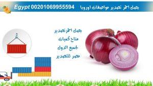 محطة فرز وتعبئة بطاطس مصر للتصدير