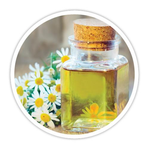 Import Egyptian camomile blue oil زيت البابونج الازرق استيراد زيت الكاموميل الازرق تصدير زيت الكاموميل الازرق export chamomil blue oil