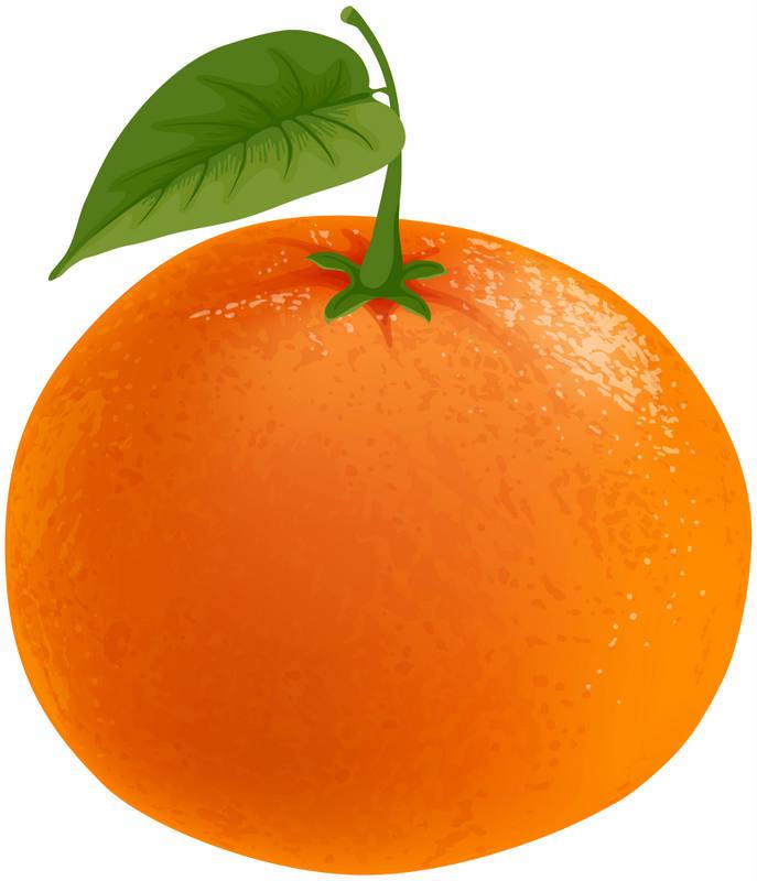 import spain mandarin and keny mandarine from Egypt