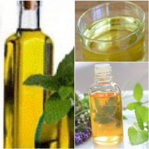 basil oil linalool oil import linalool oil export linalool oil export basil oil import basil oil