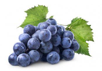 العنب المصرى استيراد و تصدير Grapes
